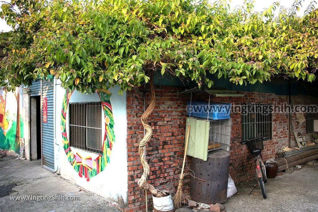 YTS_YTS_20190209_台南下營小熊維尼彩繪村Tainan Xiaying Winnie the Pooh painted village119_539A0325.jpg
