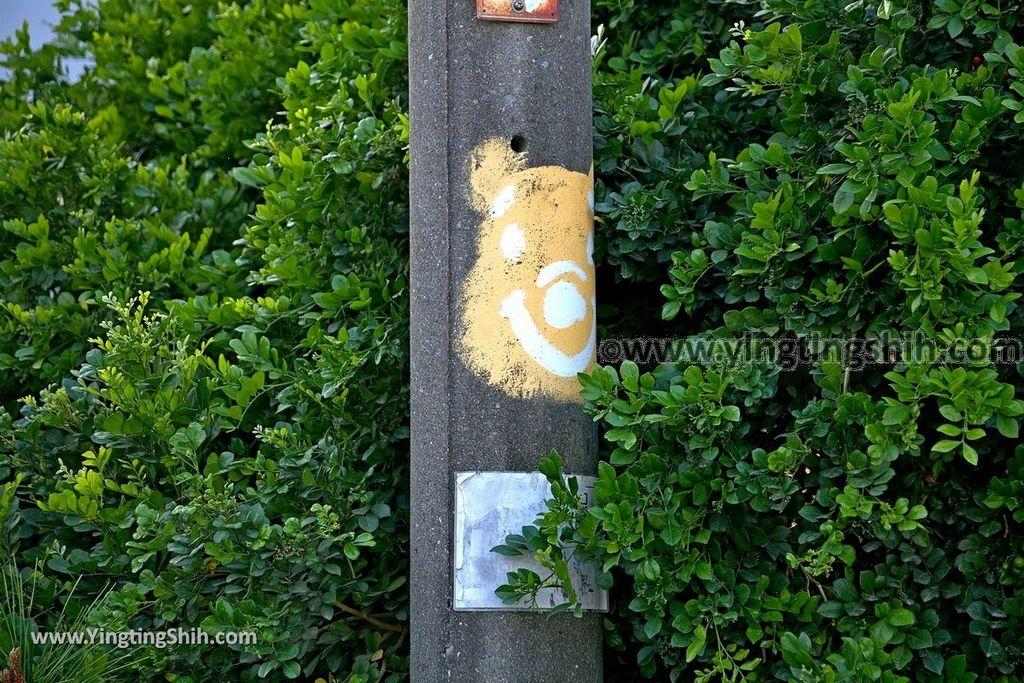 YTS_YTS_20190209_台南下營小熊維尼彩繪村Tainan Xiaying Winnie the Pooh painted village123_539A0303.jpg