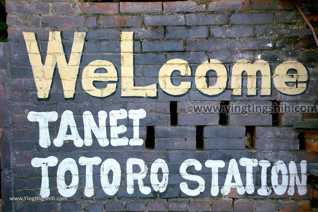 YTS_YTS_20190209_台南大內龍貓公車站/彩繪村Tainan Danei Danei Totoro Bus Stop014_539A8848.jpg