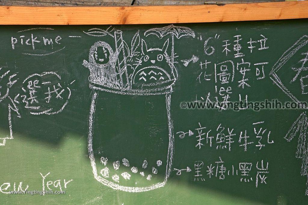 YTS_YTS_20190209_台南大內龍貓公車站/彩繪村Tainan Danei Danei Totoro Bus Stop155_539A9061.jpg
