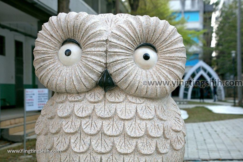 YTS_YTS_20190228_台中霧峰貓頭鷹教堂/戲水池/3D彩繪/長青學苑Taichung Wufeng Owl church011_539A4555.jpg