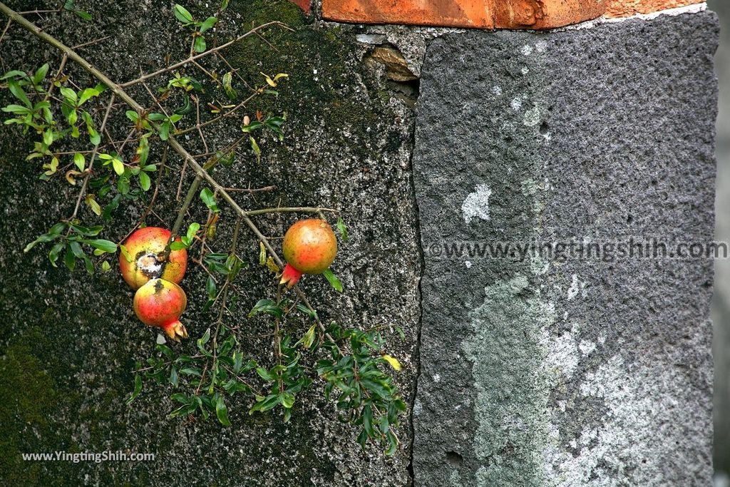 YTS_YTS_20190315_新北八里挖仔尾張家古厝New Taipei Bali Zhang Family Ancient House029_539A8278.jpg