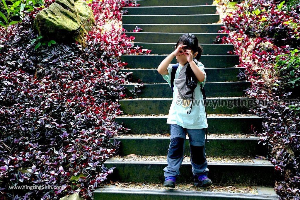 YTS_YTS_20190427_台中潭子新田登山步道/許願池/觀鷹台Taichung Tanzi Xintian Hiking Trail074_539A5656.jpg