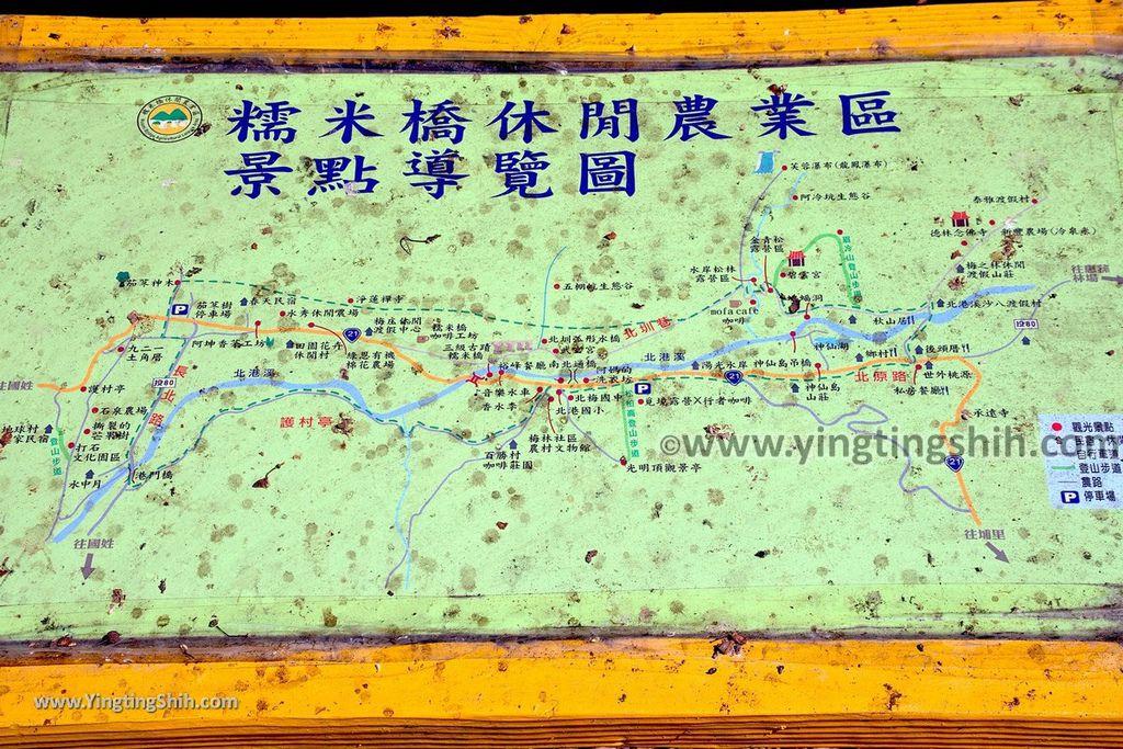 YTS_YTS_20191116_南投國姓寶島神木/看見台灣/茄苳神木/糯米橋休閒農業區Nantou Guoxing Jiadong Giant Tree005_539A4287.jpg