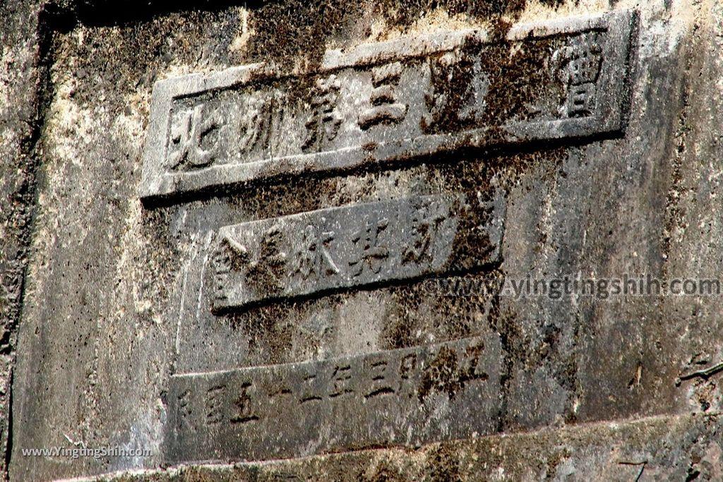 YTS_YTS_20191116_南投國姓寶島神木/看見台灣/茄苳神木/糯米橋休閒農業區Nantou Guoxing Jiadong Giant Tree023_539A4267_cr.jpg