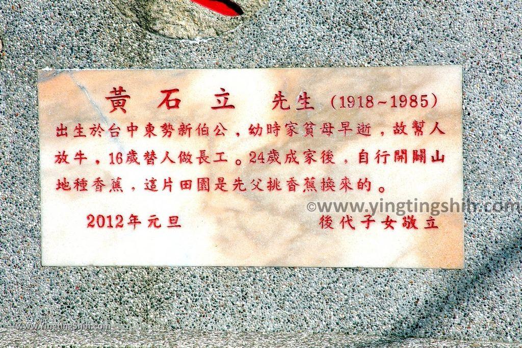 YTS_YTS_20191116_南投國姓寶島神木/看見台灣/茄苳神木/糯米橋休閒農業區Nantou Guoxing Jiadong Giant Tree029_539A4197.jpg