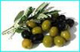 10橄欖.bmp