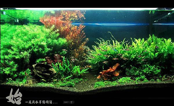 my tank111.jpg
