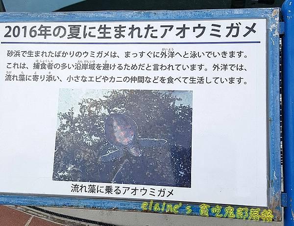 2017011107_039.jpg