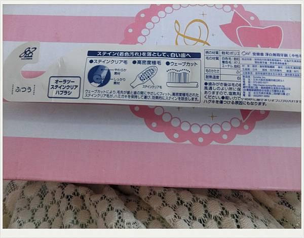 CIMG2225_副本