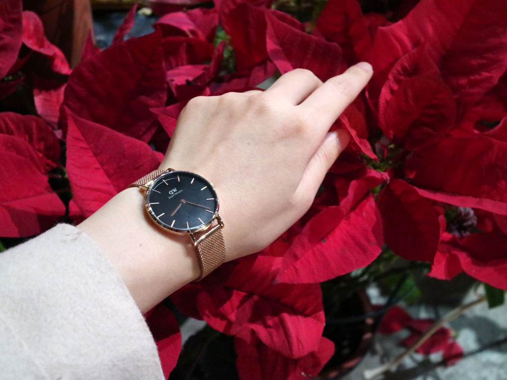 dw手錶/dw/danielwellington