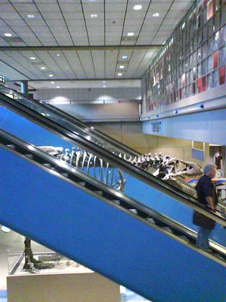 底特律機場