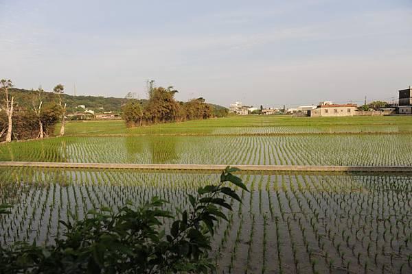 20120401小丸子_107