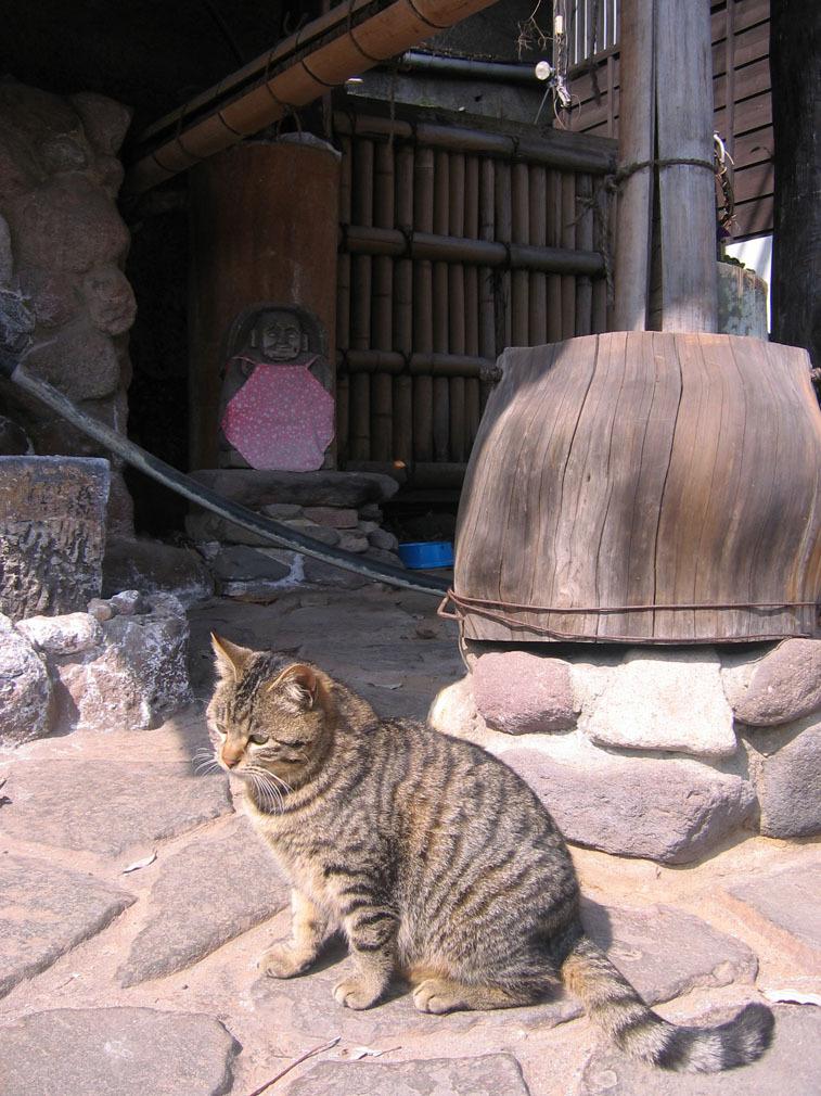 貓與地藏王