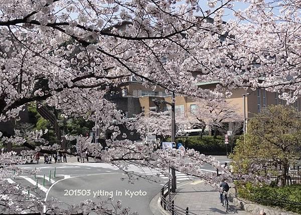 2015 Westin Miyako, Kyoto 2