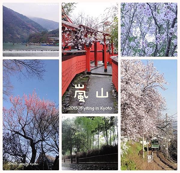 京都賞櫻~嵐山