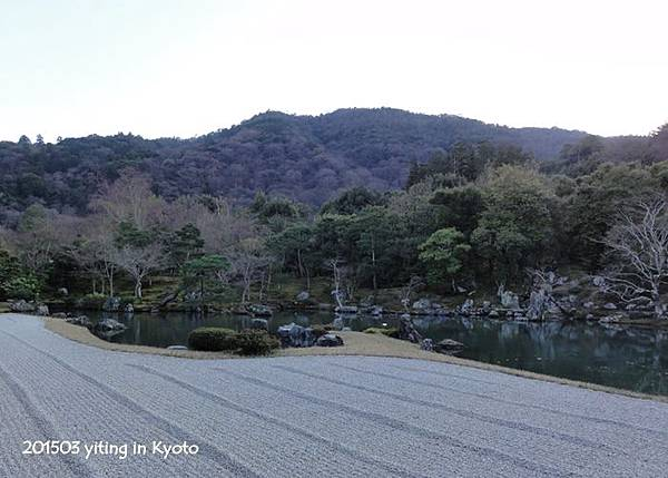 京都賞櫻~嵐山天龍寺 05