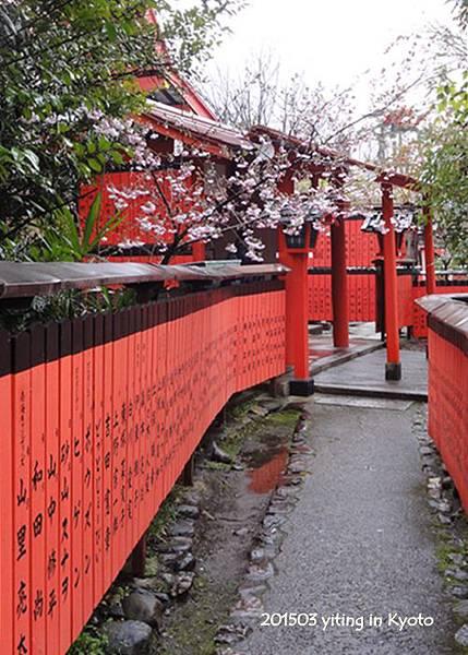 京都賞櫻~嵐山車折神社 01