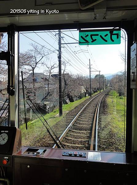 京都賞櫻~嵐山櫻花隧道 01
