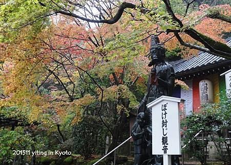 京都洛南 今熊野觀音寺 03