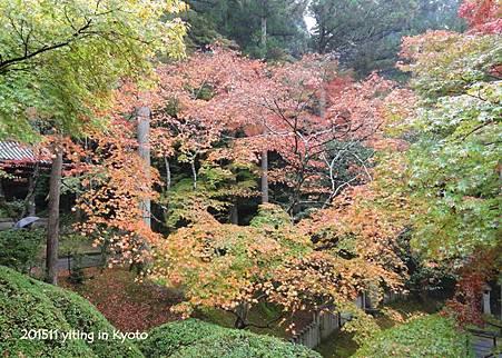 京都洛南 今熊野觀音寺 05