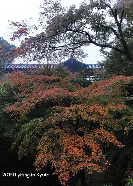 京都洛南.東福寺 03