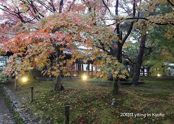 京都洛南.東福寺 05