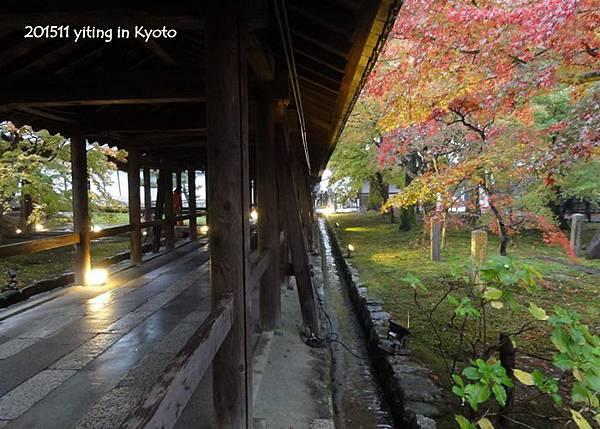 京都洛南.東福寺 06