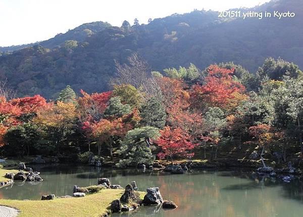201511 京都嵐山 天龍寺 01