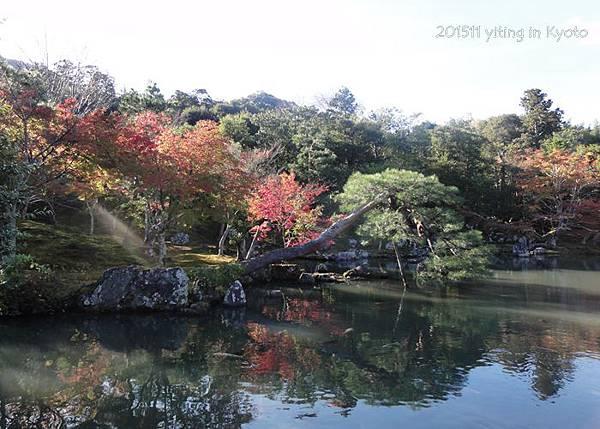 京都嵐山 天龍寺 03