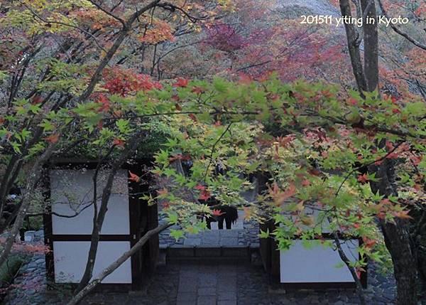 京都嵐山 常寂光寺 02