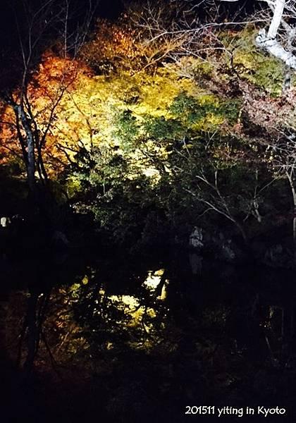 201511 京都清水寺 06