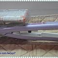 IPSA-3.jpg