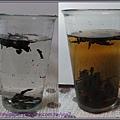 黑茶----冷泡.jpg