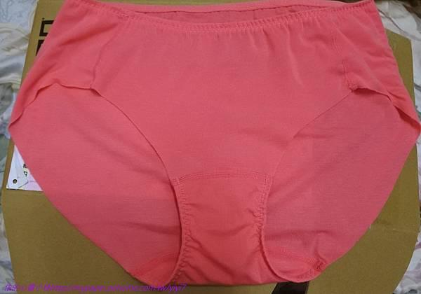 褲 - 7.jpg