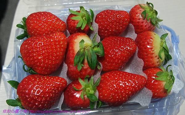 篸雞-草莓.jpg