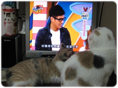 姐妹倆在看電視