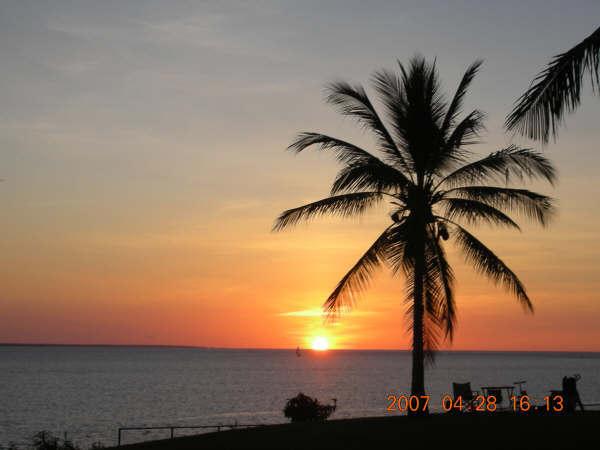一定要椰子樹配一顆太陽
