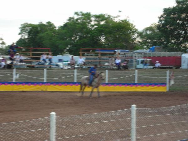 20070818 darwin rodeo 005.jpg