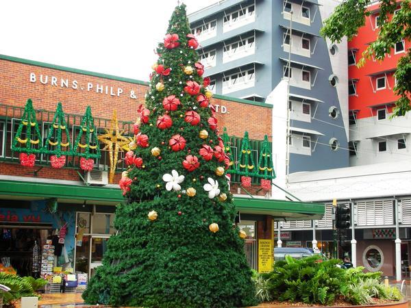 2007達爾文市區的聖誕樹