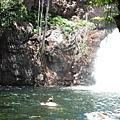 自備浮潛設備才是王道Florence waterfall@Litchfield