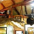 餐廳櫃檯的牛頭加鱷魚組合