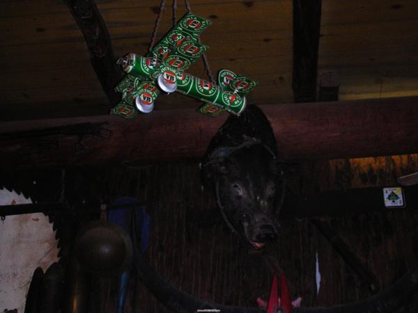 豬頭加VB啤酒罐組成的小飛機