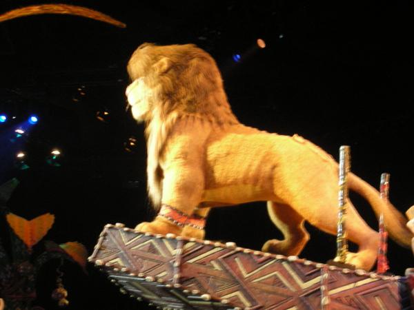 看獅子王歌舞秀 很守規則的沒用閃光