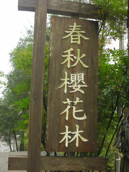 烏來櫻花林路標