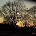 東京皇居附近的公園