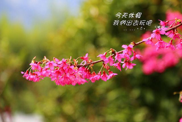 IMG_5841_副本