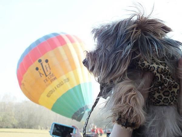 謝謝把拔帶我們來看熱氣球