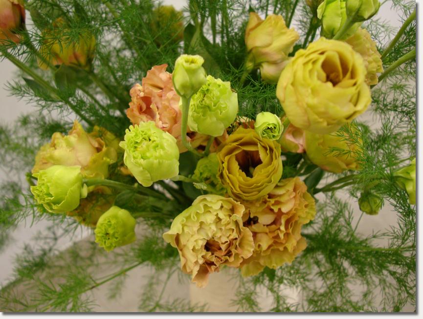 花的顏色04.jpg