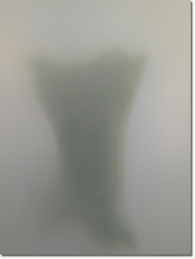 霧裡的祕密05.jpg